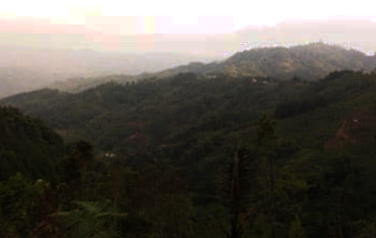 Gunung Angsana Jasinga Bogor Riwayatmu Kini 209