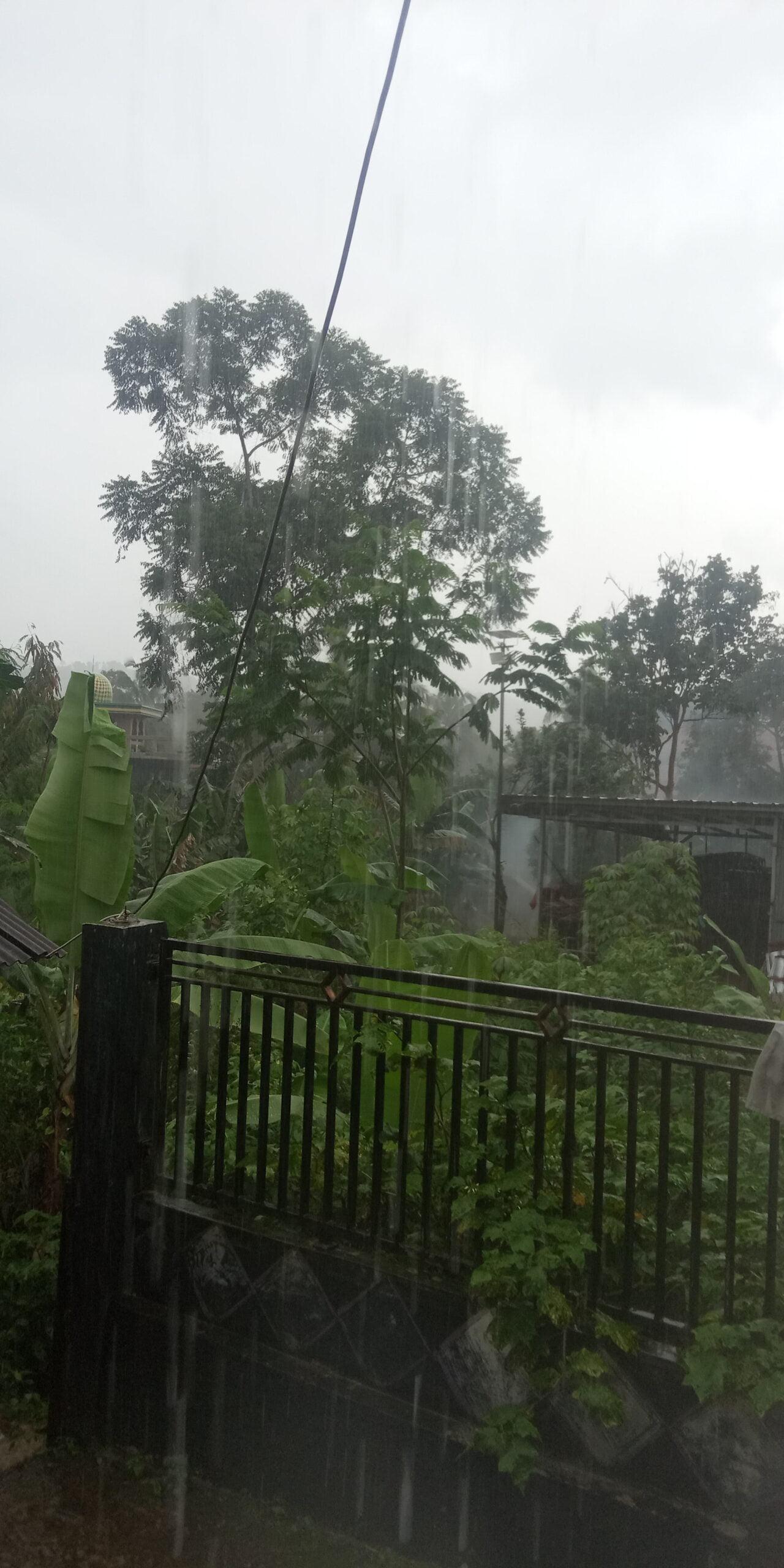 BMKG dan BNPB Rilis Peringatan Dini Potensi Hujan Deras 231